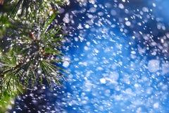 Wonderful heavy rain shower in the sunshine of springtime or summer enjoy the relaxing nature. The rain on vegetation background - Stock Photo