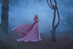 Wonderful herbalist enchantress with blond hair, dressed in an expensive luxurious long soft pink dress, holding a. Bright hood with a hood, the girl stands royalty free stock image