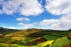 Wonderful hill. The hill is wonderful in shine stock photo