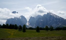 Wonderful idyllic alp scenery and distinctive mountain. Alp de siusi alp landscape and green meadows / south tyrol / sassolungo Stock Images