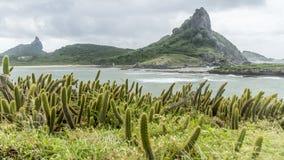 Wonderful island view landscape of Fernando Noronha Brazil stock images