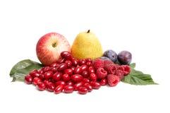 Wonderful,juicy autumn fruits on a white. Stock Photo