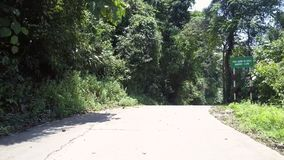 Jungle road with tree shadows near red white green signs. Wonderful jungle road with green tree shadows near red white and green road signs on tropical day stock footage