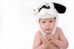 Wonderful kid in cap with ears, isolated on white Stock Photos