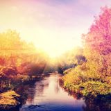 Wonderful landscape with autumn trees in forest, over the river. Colorful foliage onthe perfect sky on the background, gloving in snlight. vintage style royalty free stock image