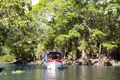 Wonderful landscape of coastline of lake Nicaragua Stock Images