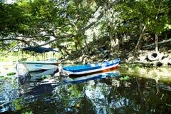 Wonderful landscape of coastline of lake Nicaragua Stock Image