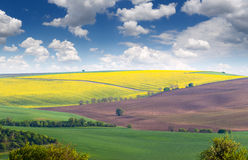 Wonderful Landscape of fields in colorful hills, big size Stock Photography