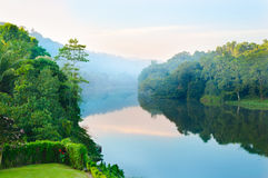 Wonderful morning on  tropical river Stock Photography