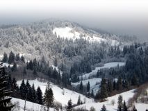 Wonderful mountain landscape. Birds-eye-view on the mountains in a foggy day. Carpathian mountains (Karpaty) in Ukraine Royalty Free Stock Photo
