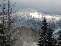 Wonderful mountain landscape. Winter wonder. Mountain landscape with a bright star in the sky. Carpathian mountains (Karpaty) in Ukraine Royalty Free Stock Photo