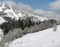 Wonderful mountain landscape. Winter wonder. Snow hillside. Carpathian mountains (Karpaty) in Ukraine Stock Photo