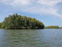 Wonderful mountainous landscape at a kayak trip into the mangrove forest in Ao Thalaine in Krabi in Thailand, Asia. Wonderful mountainous landscape at a kayak stock photos