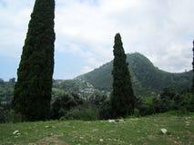 Wonderful nature. Beautiful nature new Athos, Abkhazia Royalty Free Stock Photography