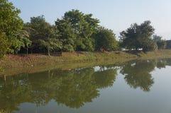 Wonderful nature scene in Chiangmai Stock Photo