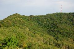 Wonderful nature scene in Hatyai Stock Photos