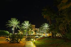 Wonderful night park with green palm trees and parked cars Stock Images