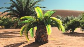 Great view on Sahara desert at sundown 3d rendering Stock Image