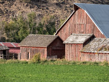 Wonderful old ranch outbuildings Royalty Free Stock Images