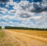 Wonderful panorama of countryside with cloudy sky and harvested Stock Image