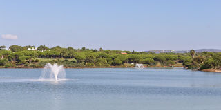 Wonderful panorama the lake and the fountains of the park. Stock Photography