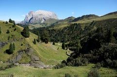 Wonderful panoramic view of alp de siusi with distinctiv dolomite mountain peak Royalty Free Stock Photo