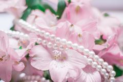 Wonderful pearl jewellery. Jewelry and luxury gift for her styled concept - wonderful pearl jewellery, elegant visuals stock image