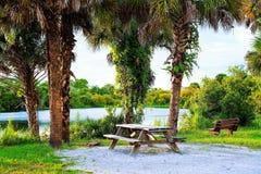 Wonderful Picnic. A wonderful picnic area along the banks of the Myakka river in southwest Florida stock photos