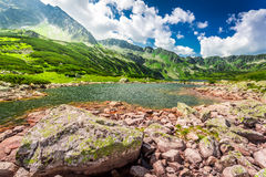 Wonderful pond in the mountains Stock Photos