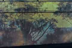 The Wonderful Realm of Shadow land, Taken at Night with Light coming from a Truck-bay. Fusion of Colours with Shadows, of Trees, on a Corrugated Wall. The royalty free stock images