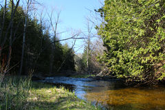 Wonderful river in barrie ontaria Royalty Free Stock Photography