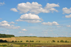 Wonderful rural summer landscape in the Russia: drenched summer sun fields Stock Photos