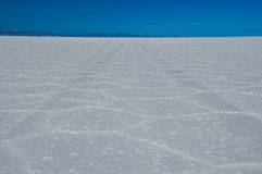 Wonderful Salar de Uyuni, Bolivia Stock Image
