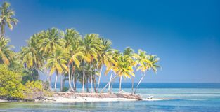 Fantastic tropical beach banner. Exotic landscape background concept. Palms on island tropical landscape royalty free stock image
