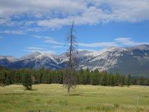 Awesome scenery in Yosemite National Park, California, USA Stock Photo