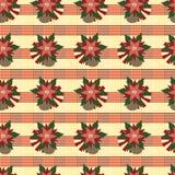Wonderful seamless background with poinsettia Stock Image