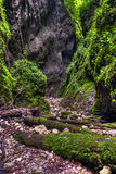 The wonderful Sighistel gorge Royalty Free Stock Image