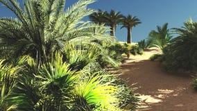 Wonderful sight on Sahara desert at sundown 3d rendering Stock Image