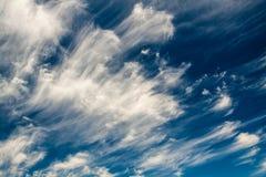 Wonderful sky. Clouds on a summer sky Stock Photos