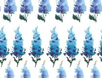 Wonderful sophisticated gorgeous bright tender gentle floral herbal spring colorful delphiniums located vertically pattern waterco. Lor hand sketch Stock Images