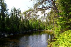 Wonderful summer day: Beautiful lake in the canadian forest. Wonderful summer day: Beautiful lake in canadian forest royalty free stock photo