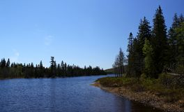 Wonderful summer day: Beautiful lake in Ontario.  royalty free stock images