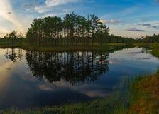 Wonderful sunset cky over Suru Suursoo bog, Estonia Stock Images
