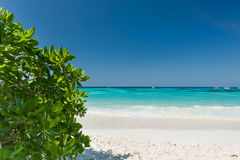 Wonderful tropical  beach Royalty Free Stock Images