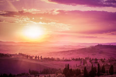 Wonderful Tuscany landscape with cypress trees, farms and medieval towns, Italy. Pink and purple sunset Royalty Free Stock Photography