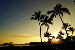 Wonderful vacation in Poipu beach, Kauai, Hawaii Royalty Free Stock Photography