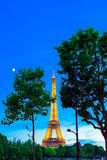 Wonderful view of Eiffel Tower in Paris Royalty Free Stock Images