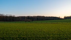 Wonderful view over field and forest at dusk. Essen, Germany stock images