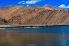 Wonderful View Of Pangong Tso, Leh & Ladhak, INDIA stock photos