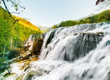 Wonderful view of the Pearl Shoals Waterfall among mountains. Wonderful view of the Pearl Shoals Waterfall among wooded mountains in Jiuzhaigou nature reserve ( royalty free stock photography